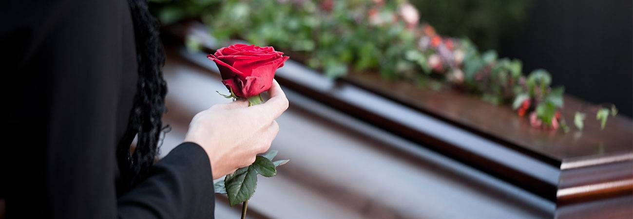 red rose and coffin
